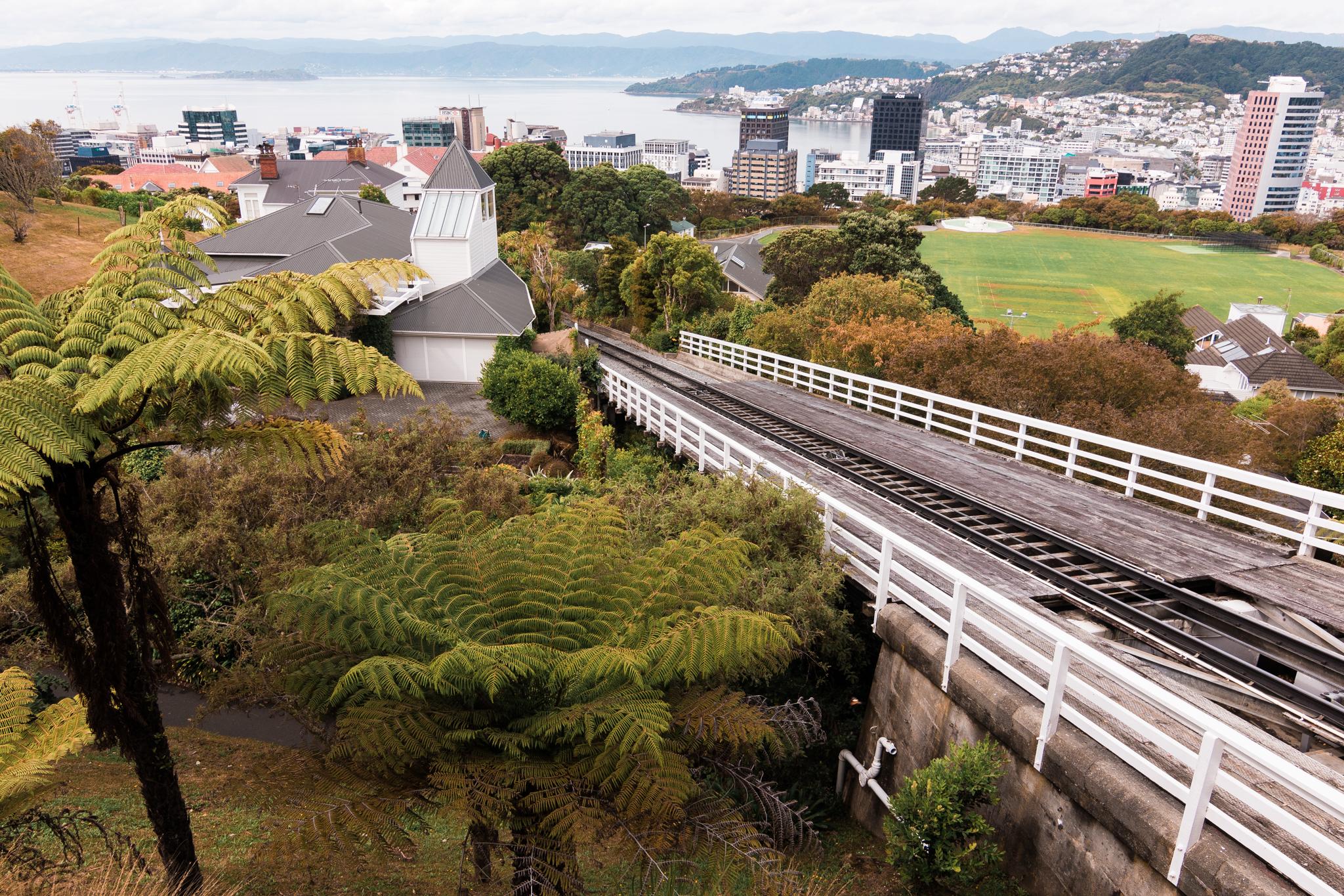 Wellington-3