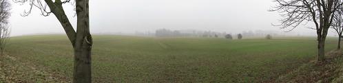 20110316 0203 193 Jakobus Feld Nebel Bäume_P01