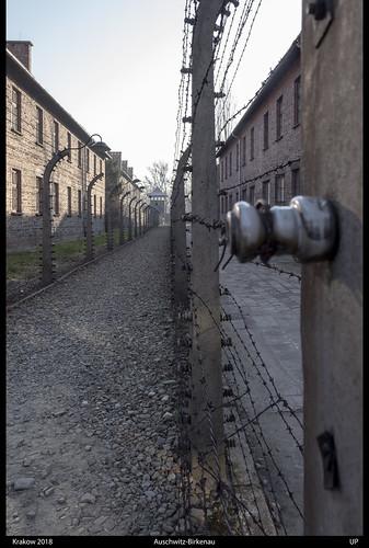 Krakow 2018, Auschwitz