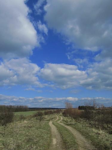 20110320 0207 283 Jakobus Weg Bäume Feld Weite Wolken