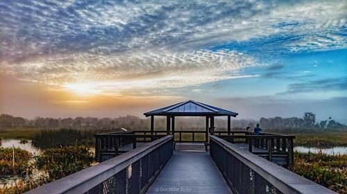 phonephotography sunriselovers sunrise clouds cloudporn skypainter birdwalk celeryfields