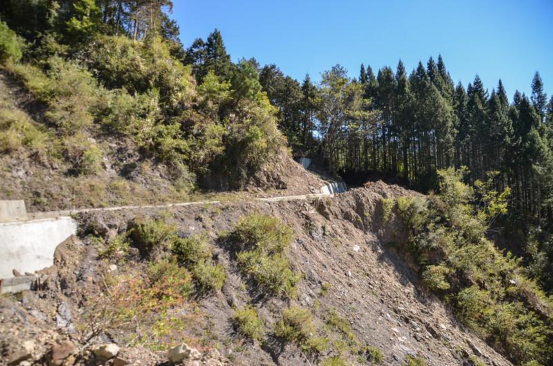 小關山林道 3