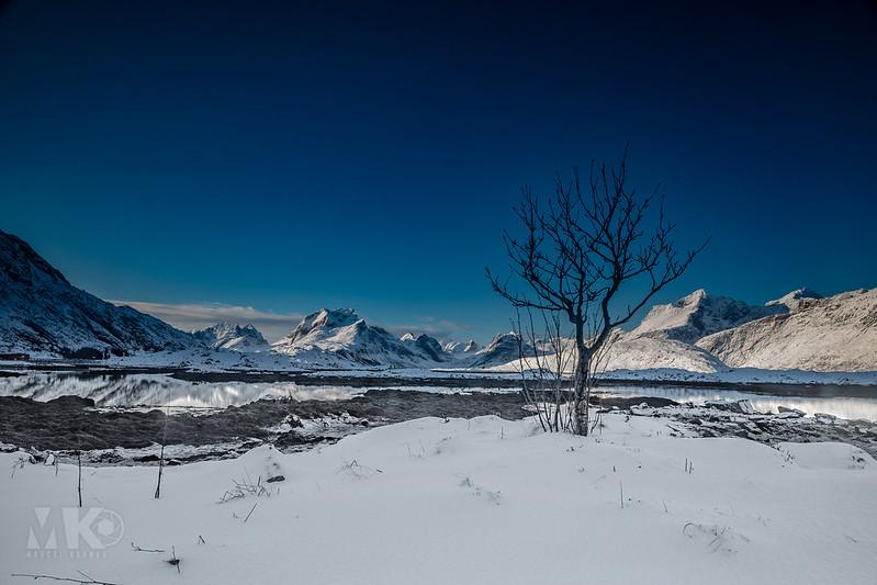 20190307-Land of Light Photography Workshop, Lofoten-005.jpg