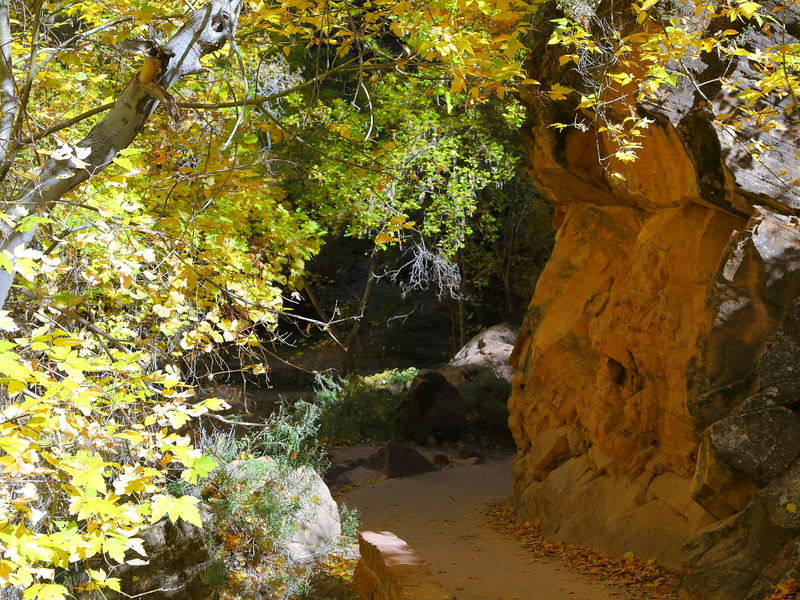 IMG_9530 Riverside Walk in Fall