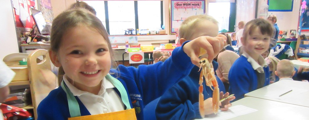 Something Fishy in Rainbow Class !