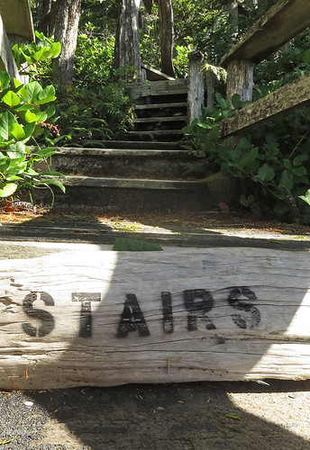 Stairs on the Wild Pacific Trail in Ucluelet on Vancouver Island, Canada