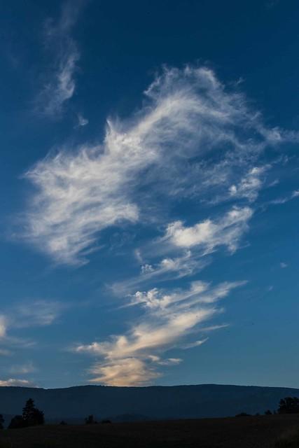 Paysages-Nuée Oiseaux Wavre_013, Canon EOS 80D, Sigma 18-35mm f/1.8 DC HSM
