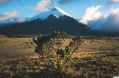 Volcano Cotopaxi - Ecuador