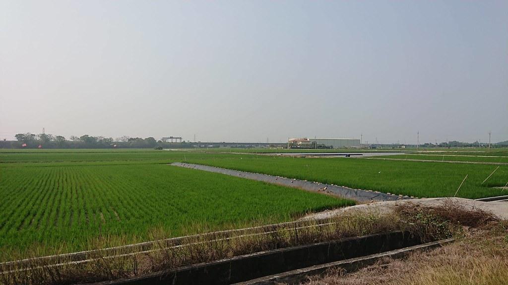 水雉生態教育園區