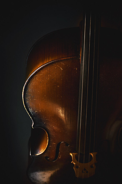 Old Wooden Cello, Canon EOS 5D MARK II, Canon EF 35-80mm f/4-5.6