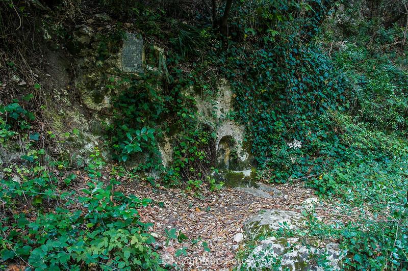 Font de Sant Llorenç en el Fondo de la Senabre