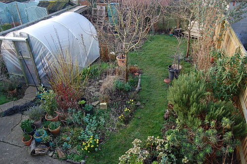 Looking Down on the Back Garden - February 2019