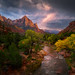 Postcards Shot of Zion National Park