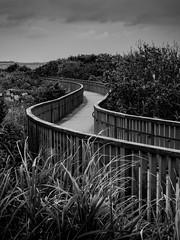 Wooden Promenade