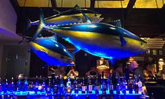 Bar in BASS PRO SHOP
