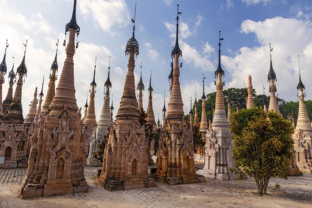 Tree in the Stupas - Kakku