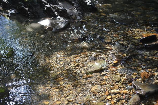 Recorrido Quebrada Olivares-Minitas