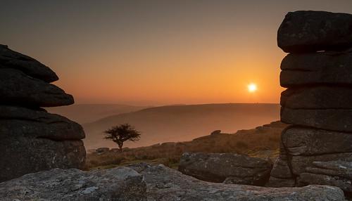 dartmoor combestonetor dawn tor nationalpark granite tree hawthorn lonetree sunrise morning early mist hill contrejour