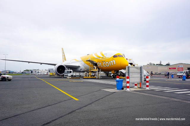 Scoot in Gold Coast - Boeing 787 Dreamliner