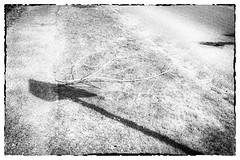 Les Errements de l'âme / The wanderings of the soul #2