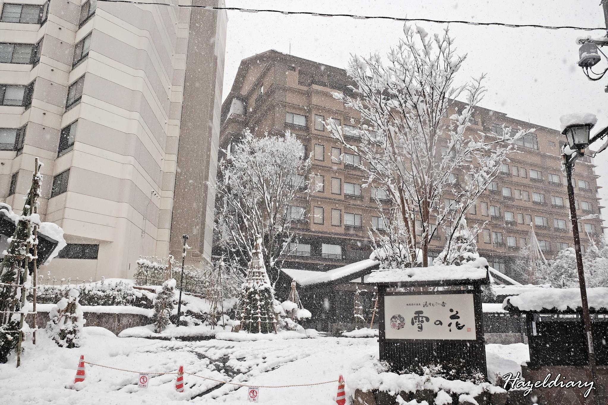 Echigo Yuzawa Station-Onsen Ryokans