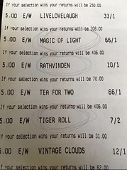 epic grand national win
