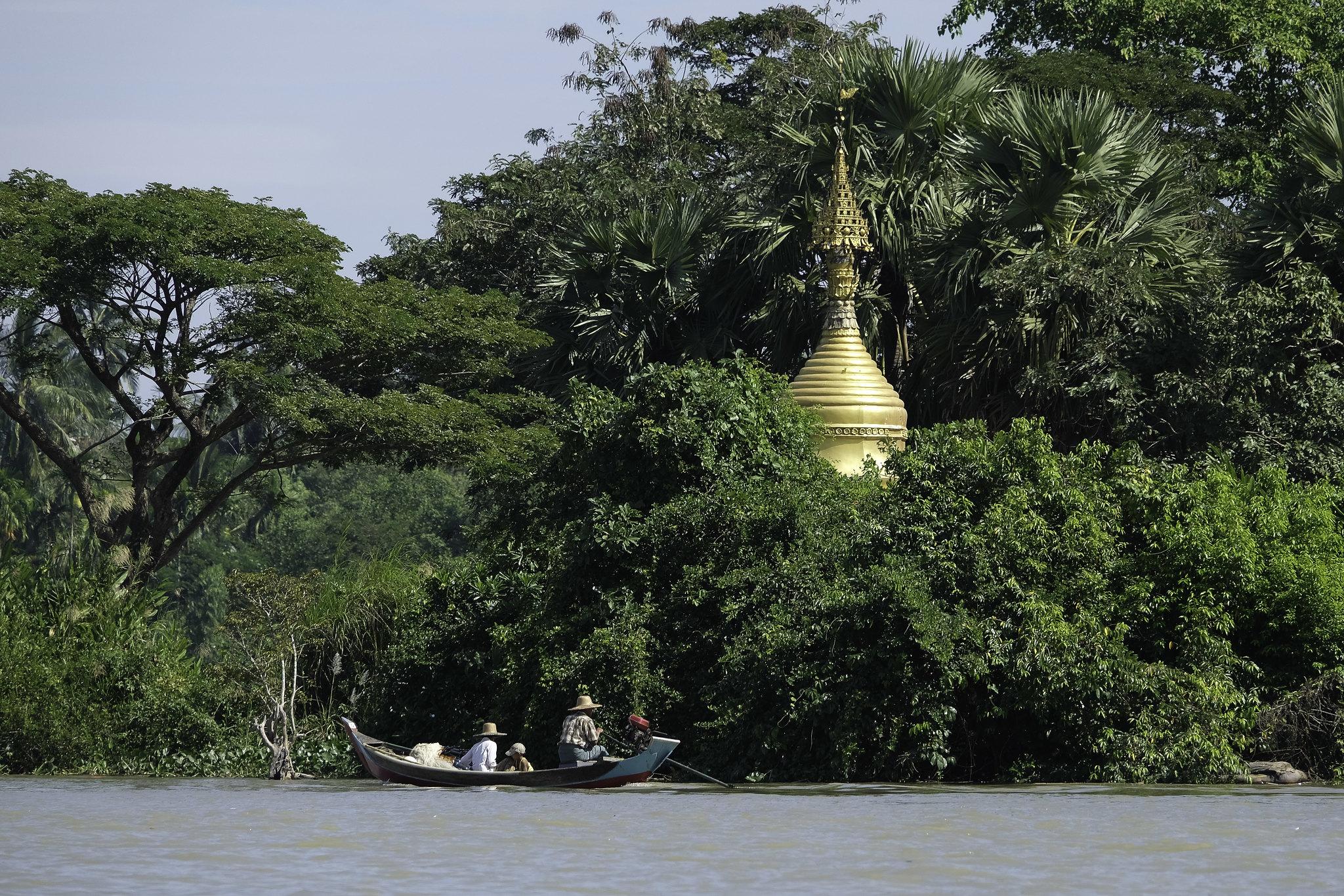 freda_pagode_boot2