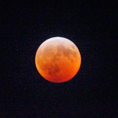 Super Wolf Lunar Eclipse