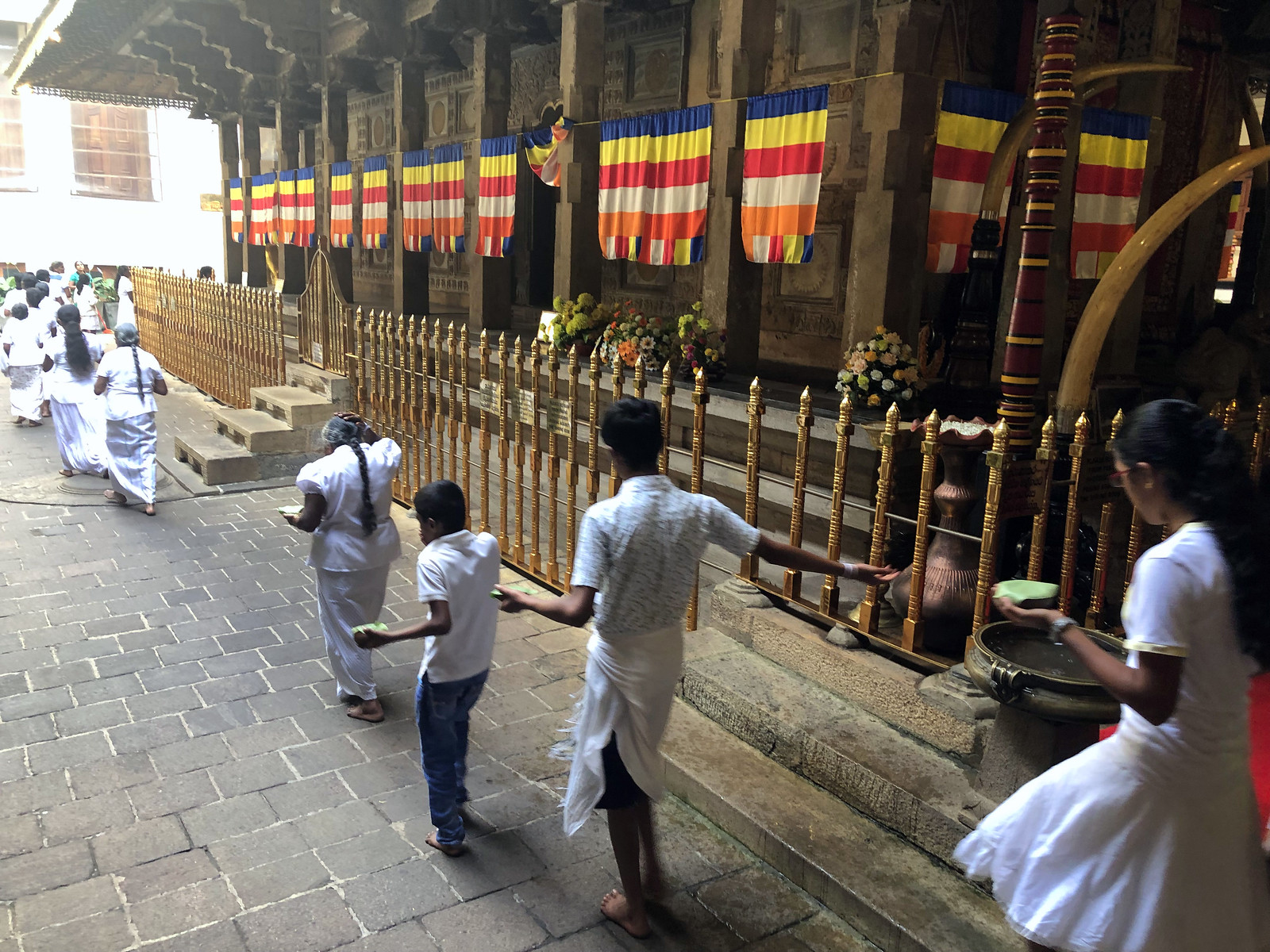 Kandy en un día, Sri Lanka kandy en un día - 46151979475 e61b325bc7 h - Kandy en un día, Sri Lanka