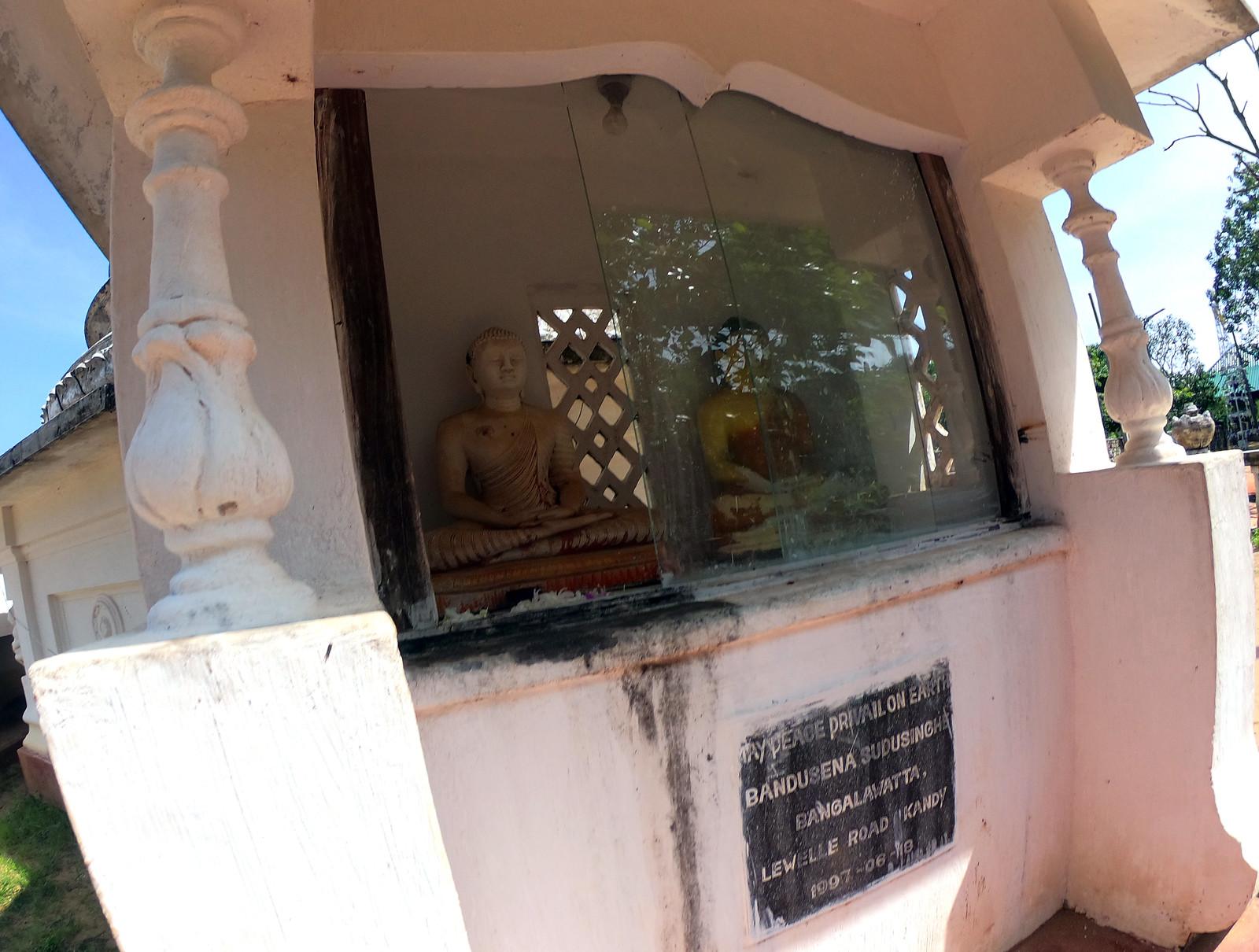 Aukana, la estatua de Buda más alta de Sri Lanka buda de aukana - 46728900722 76d5c19a9a h - Buda de Aukana, la estatua de Buda más alta de Sri Lanka