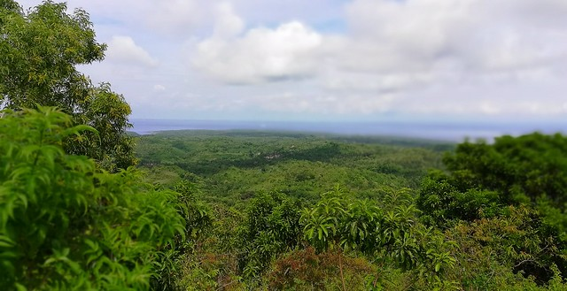 Nusa Penida Indonesia / Out In the Green