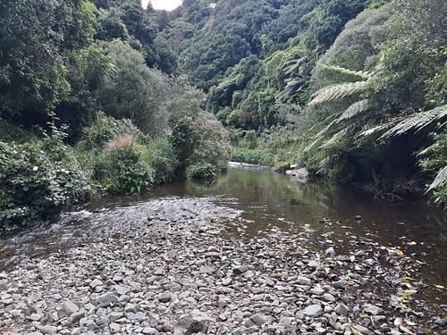 Trelissick Park, Kaiwharawhara, Wellington