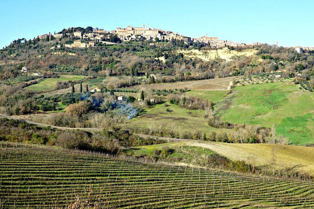Montepulciano Val d'Orciasta