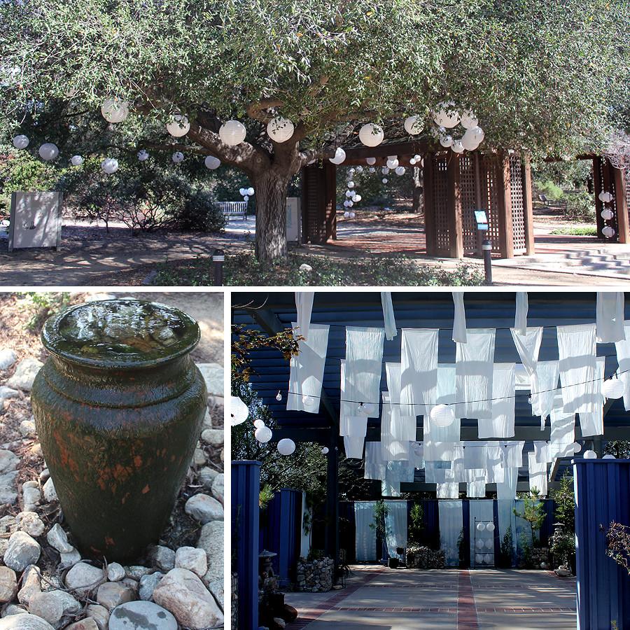 Rancho-Santa-Ana-Botanical-Gardens-Walk-11