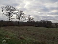 2019-01-09_11-33-01 - Photo of Le Douhet