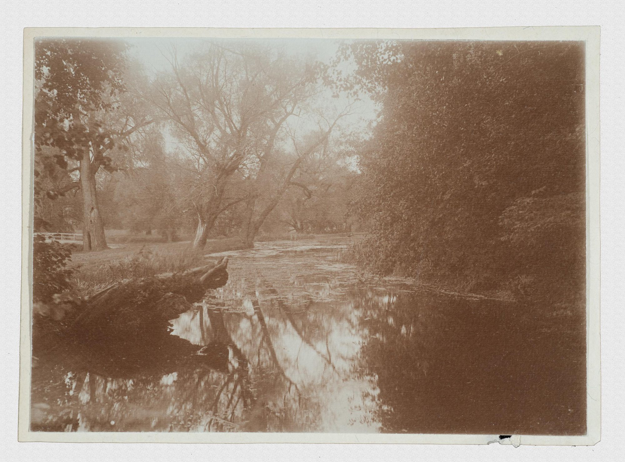 1910. Вид реки Сходни в Братцеве