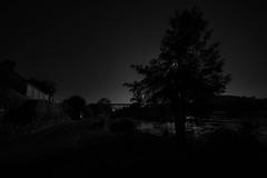 Midnight Shadows - Photo of Marnac