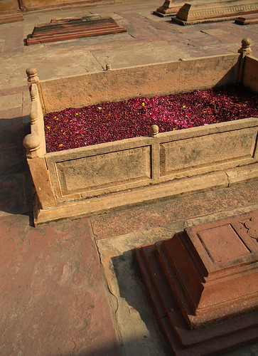 Rose petals on a tomb at Fatehpur Sikri, a mosque just outside of Agra, India