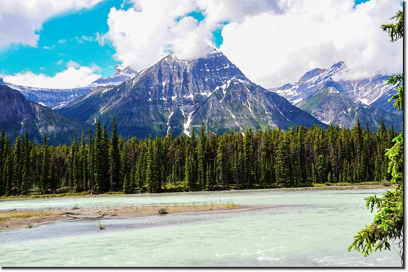 The Athabasca River and a Mountain View (Jasper National Park) 7