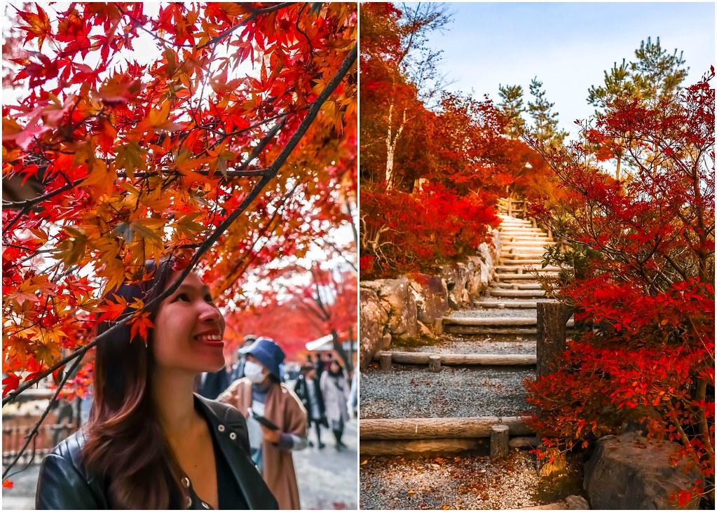 kyoto-tenryu-ji-temple-alexisjetsets