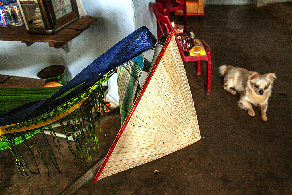 Hammock, hat and dog--Ea Kly