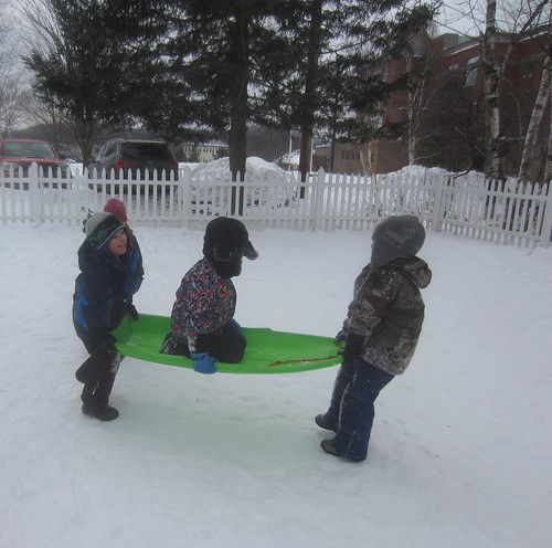 carrying the passenger in the sled