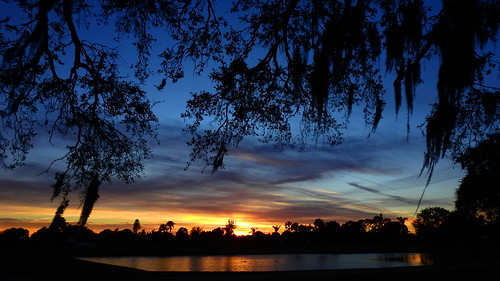 sunset sundown dusk sun evening endofday sky clouds color red gold orange pink yellow blue tree palm outdoor silhouette weather tropical exotic wallpaper landscape nikon coolpix p900 pond lake water reflection manateecounty bradenton florida jimmullhaupt cloudsstormssunsetssunrises