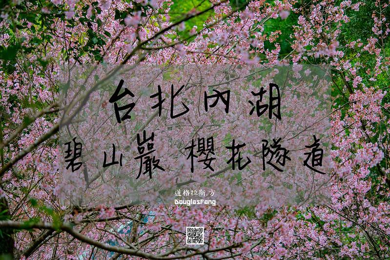 【遊記】台北內湖碧山巖櫻花 (1)