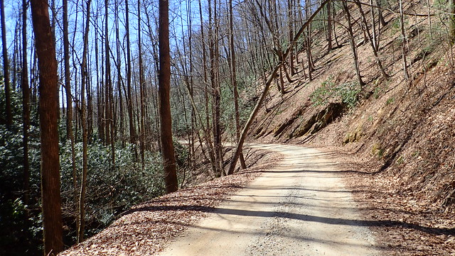 Roseboro Road