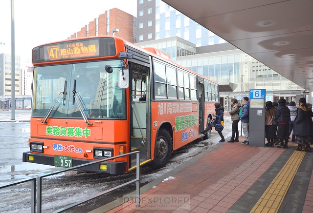 hokkaido itinerary how to get around asahikawa