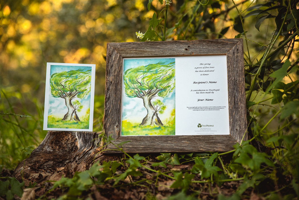 TreePeople 2019 Mothers Day Card