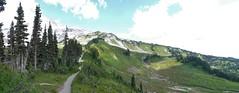 Alta Vista Trail #2 photostitch