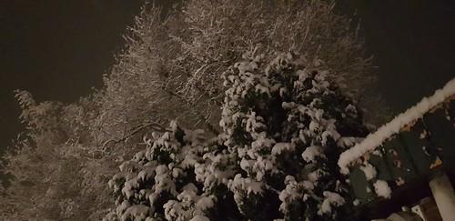 Sneeuw Gasselternijveen 30-01-2019