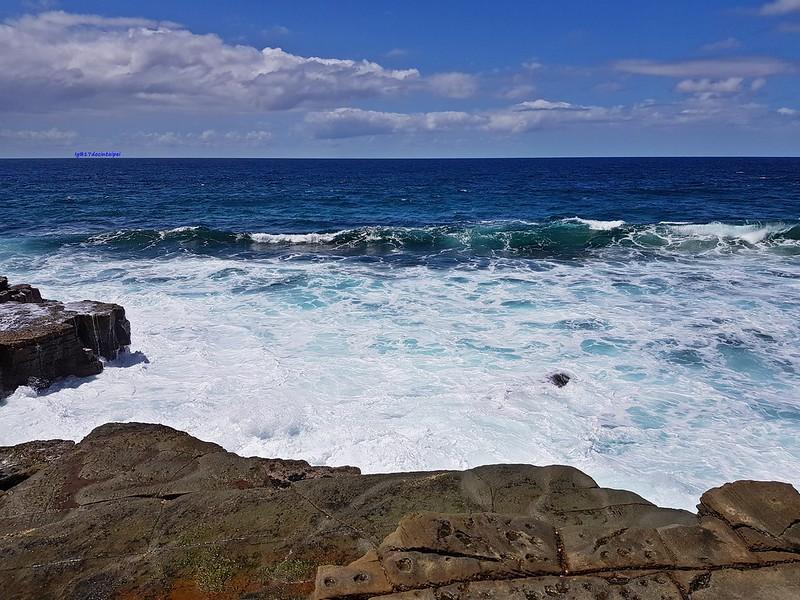 travel-sydney-雪梨一日遊-Figure 8 Pools-八字湖 (26)